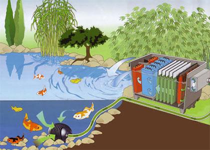 Фильтр для водоема: какой купить и почему?